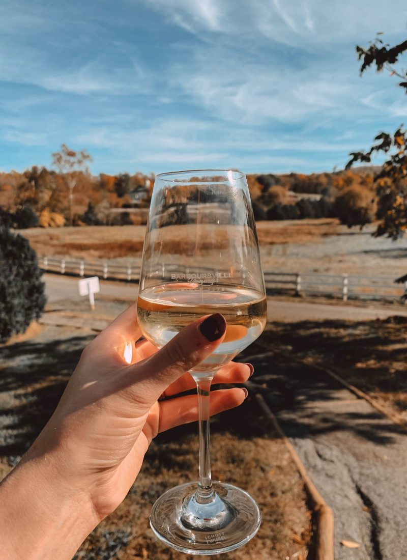 Best of Wineries in Charlottesville, Virginia | She Saw Style