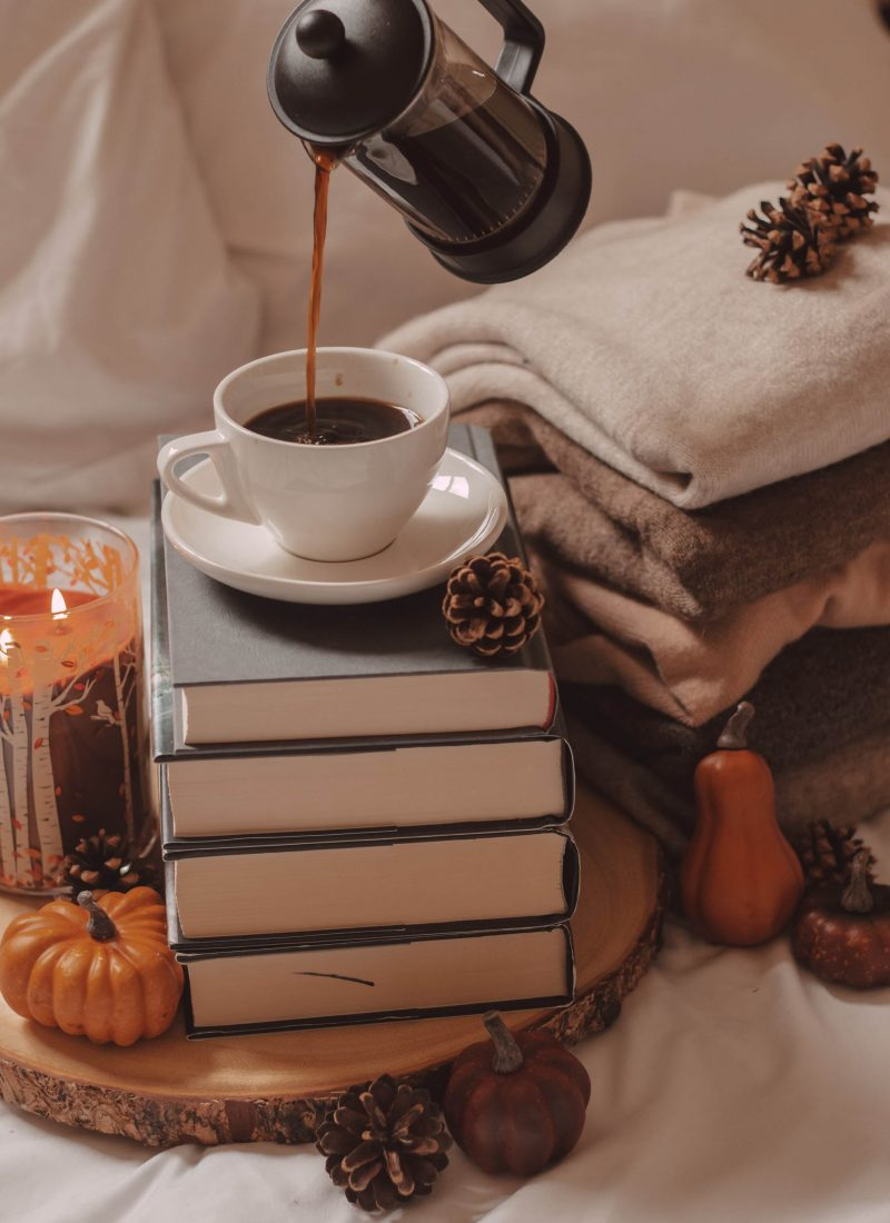 The Best of Cozy Books for Fall