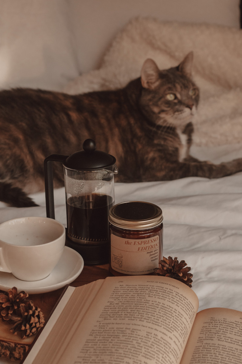 a book lays open next to a candle, coffee mug, and french press filled with coffee. a cat sits in the background.